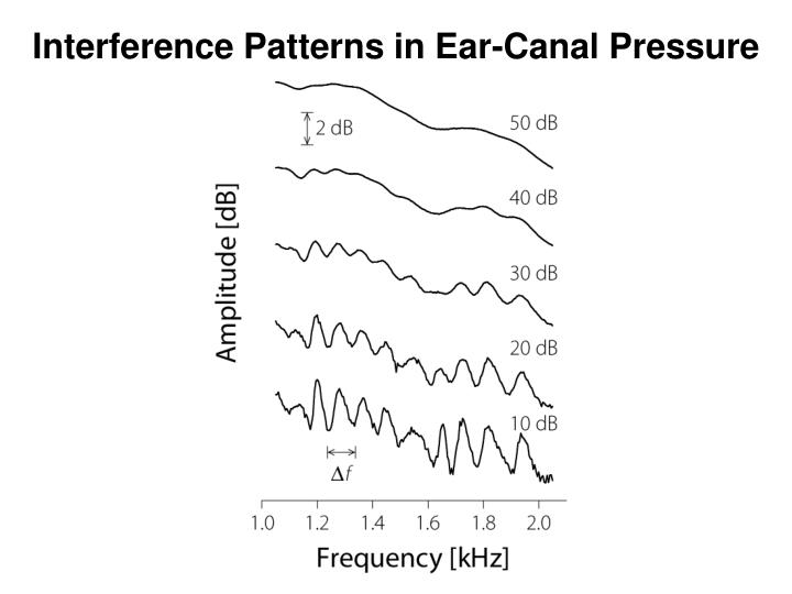 Interference Patterns in Ear-Canal Pressure