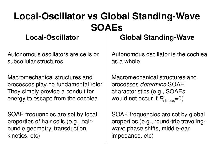 Autonomous oscillators are cells or subcellular structures