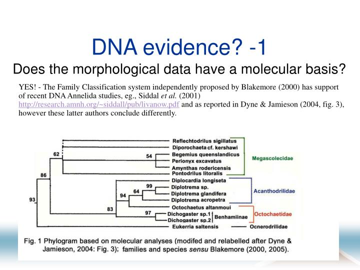 DNA evidence? -1