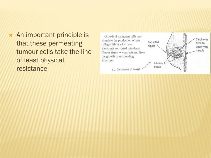 An important principle is that these permeating tumour cells take the line of least physical resistance