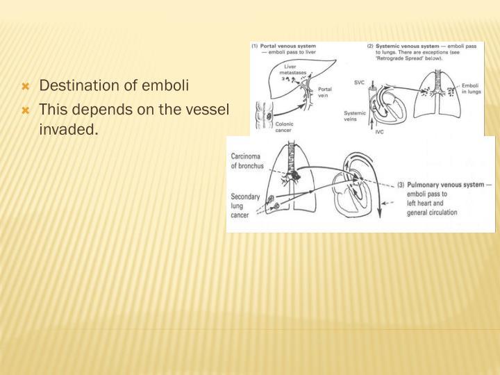 Destination of emboli