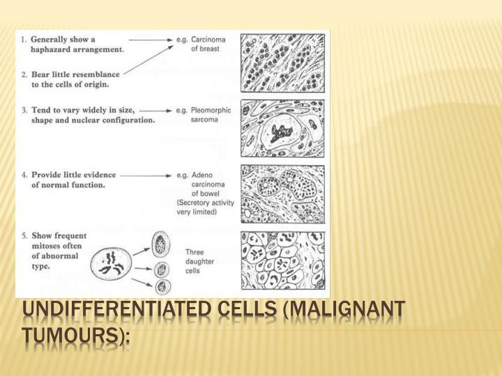 UNDIFFERENTIATED CELLS (MALIGNANT TUMOURS):