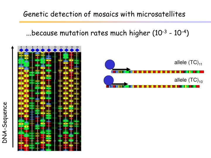 Genetic detection of mosaics with microsatellites
