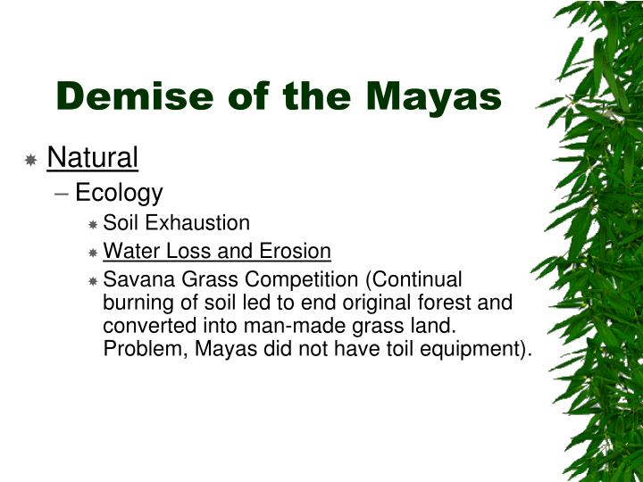 Demise of the Mayas