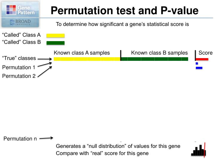 Permutation test and P-value