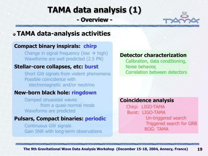 TAMA data analysis (1)