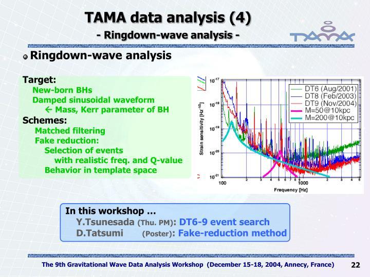 TAMA data analysis (4)