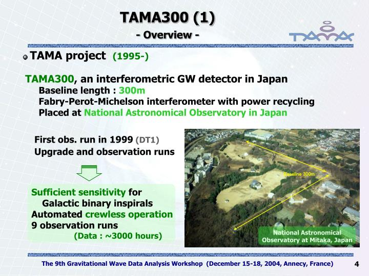 TAMA300 (1)