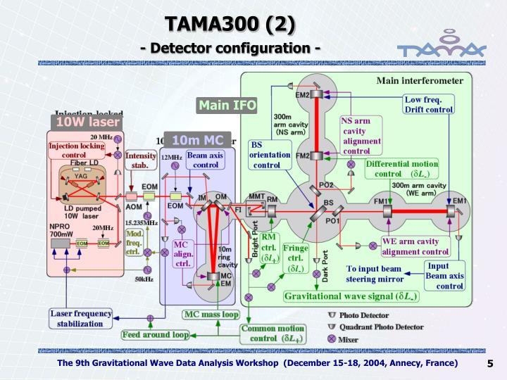 TAMA300 (2)