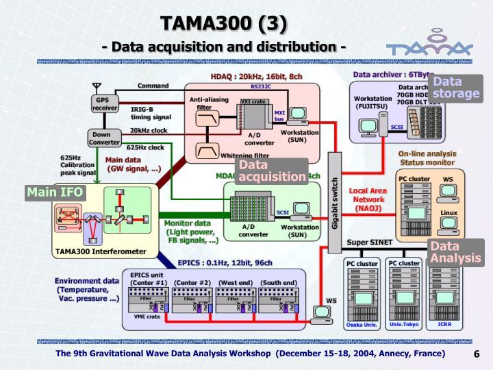 TAMA300 (3)