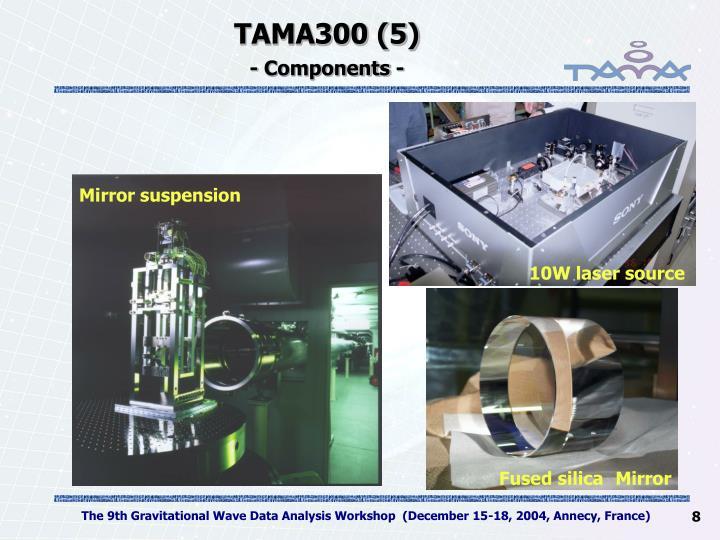 TAMA300 (5)