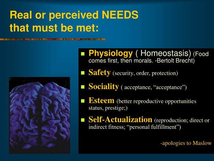 Real or perceived NEEDS
