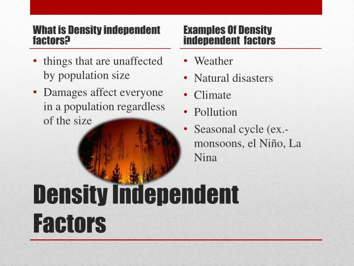 What is Density independent factors