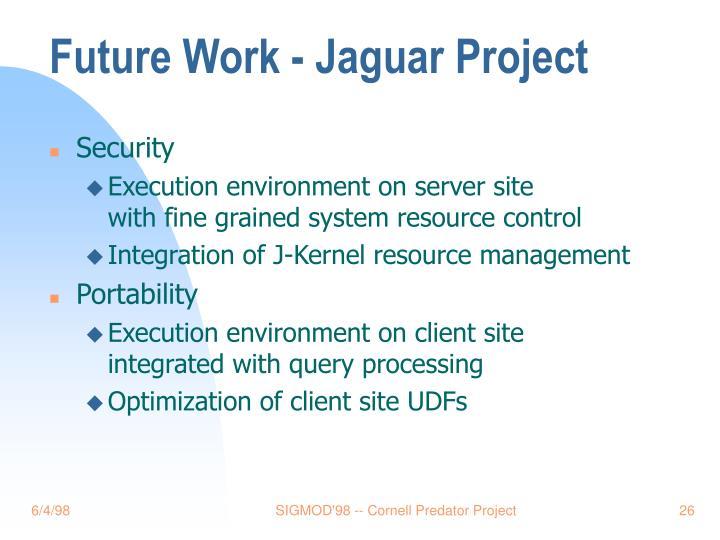 Future Work - Jaguar Project