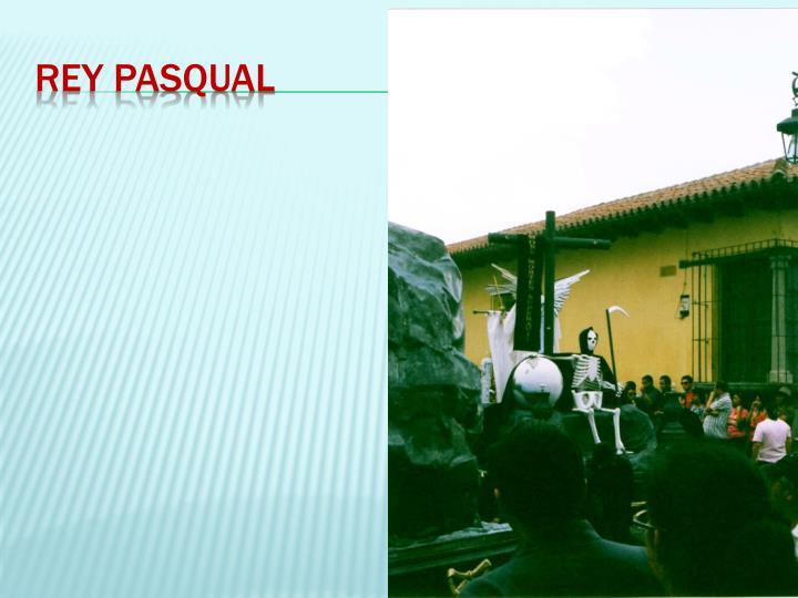 Rey Pasqual