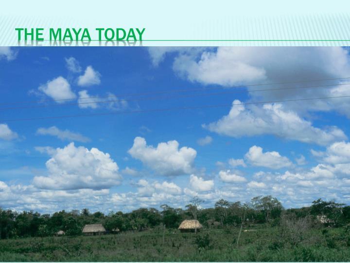 The Maya Today