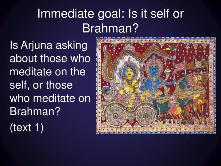 Immediate goal: Is it self or Brahman?