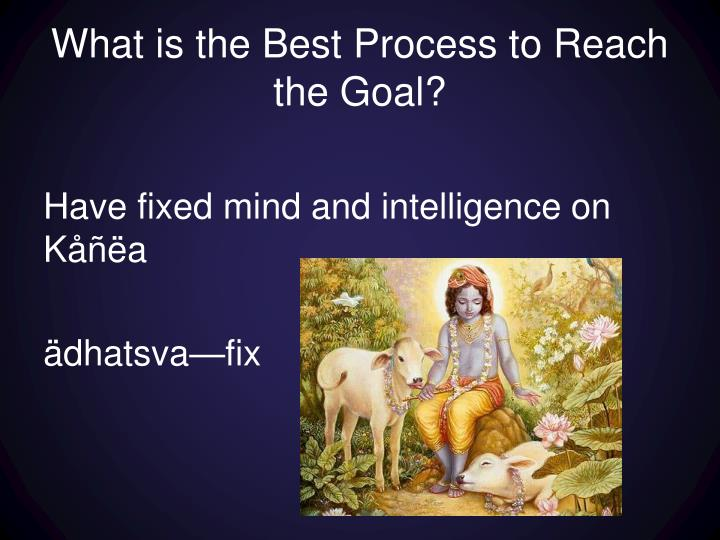What is the Best Process to Reach the Goal?