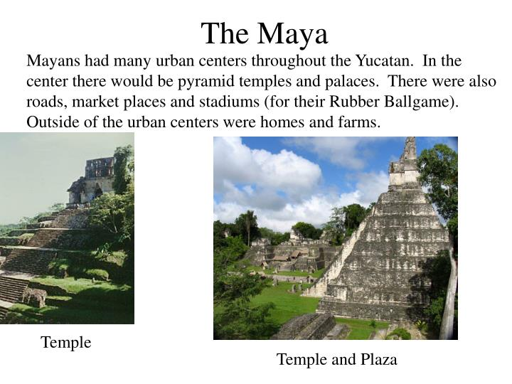 Mayans had many urban centers throughout the Yucatan.  In the center there would be pyramid temples and palaces.  There were also roads, market places and stadiums (for their Rubber Ballgame).  Outside of the urban centers were homes and farms.