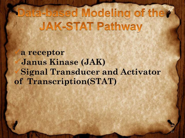 Data-based Modeling of the JAK-STAT Pathway