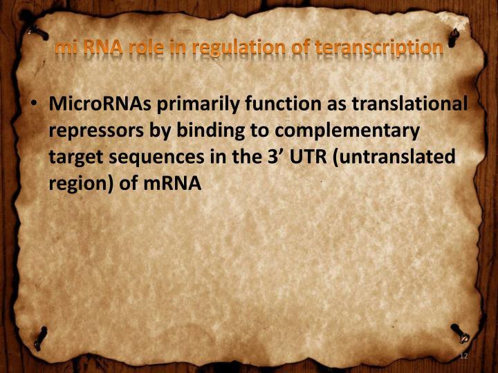 mi RNA role in regulation of teranscription