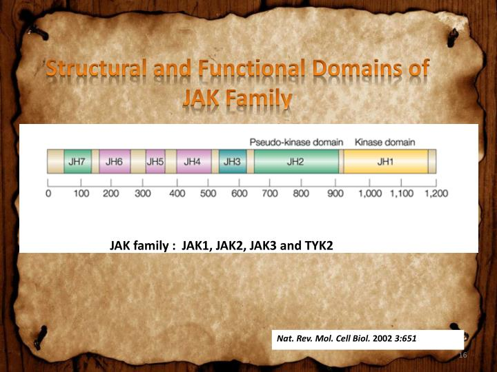 Structural and Functional Domains of JAK Family