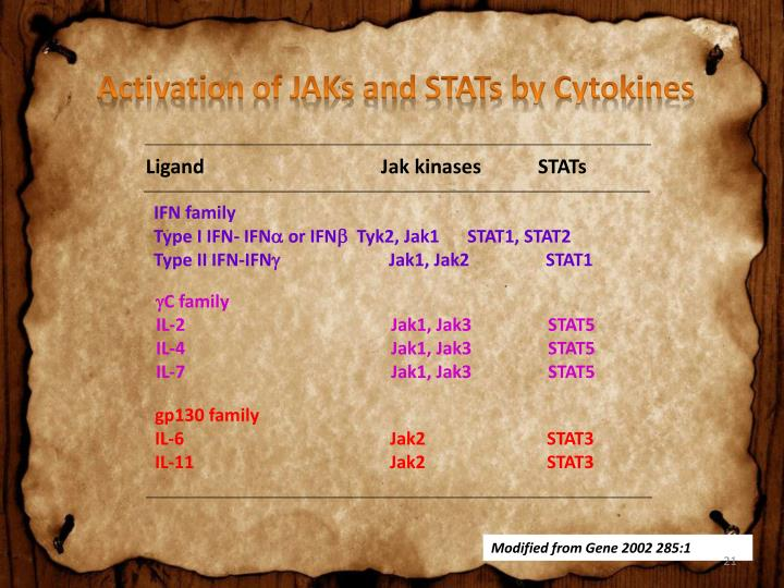 Activation of JAKs and STATs by Cytokines