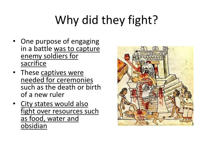 Why did they fight?