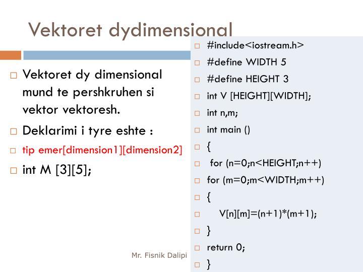 Vektoret dydimensional