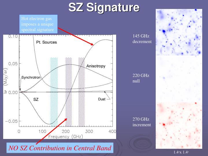 SZ Signature