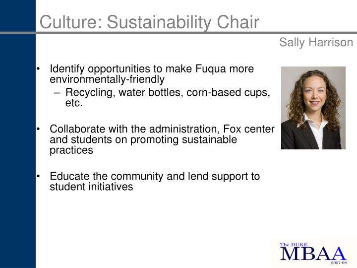 Culture: Sustainability Chair