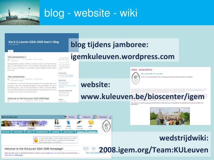 blog - website - wiki