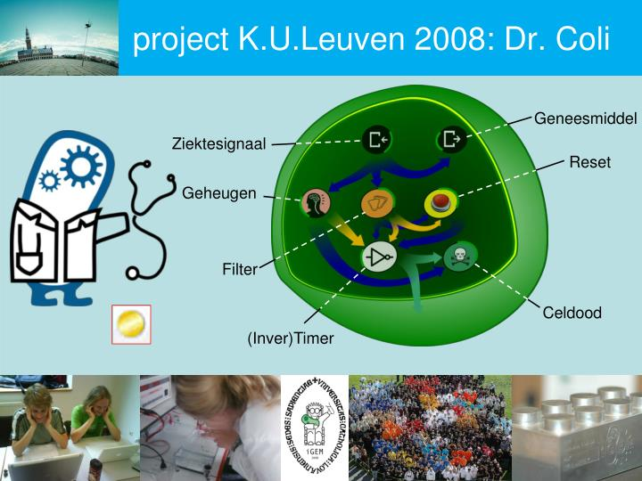 project K.U.Leuven 2008: Dr. Coli