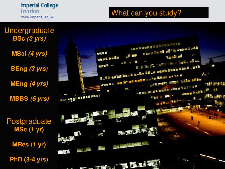 What can you study?