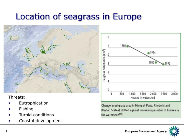 Location of seagrass in Europe