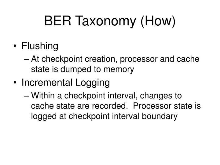 BER Taxonomy (How)