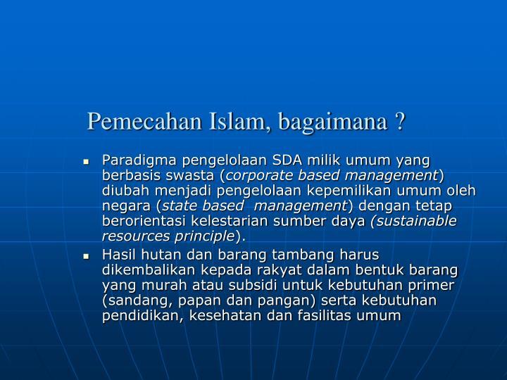 Paradigma pengelolaan SDA milik umum yang berbasis swasta (