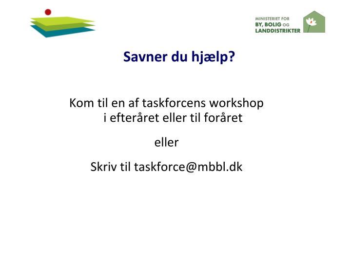 Kom til en af taskforcens workshop i efteråret eller til foråret