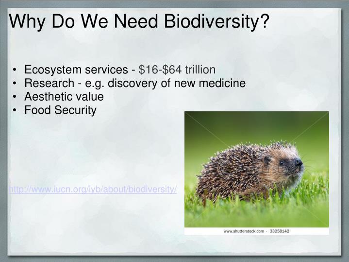 Why Do We Need Biodiversity?