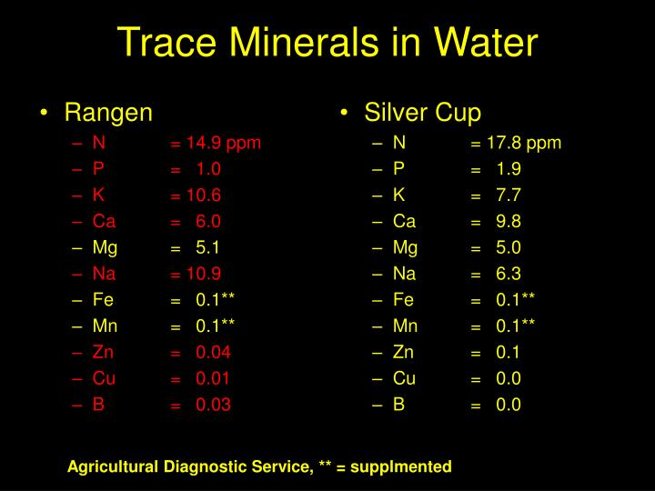 Trace Minerals in Water