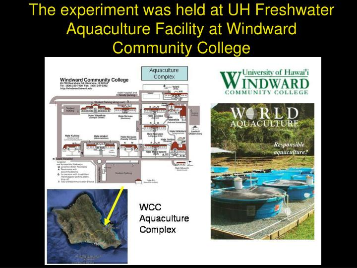 The experiment was held at UH Freshwater Aquaculture Facility at Windward Community College