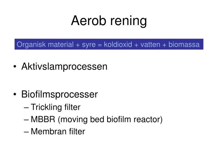 Aerob rening