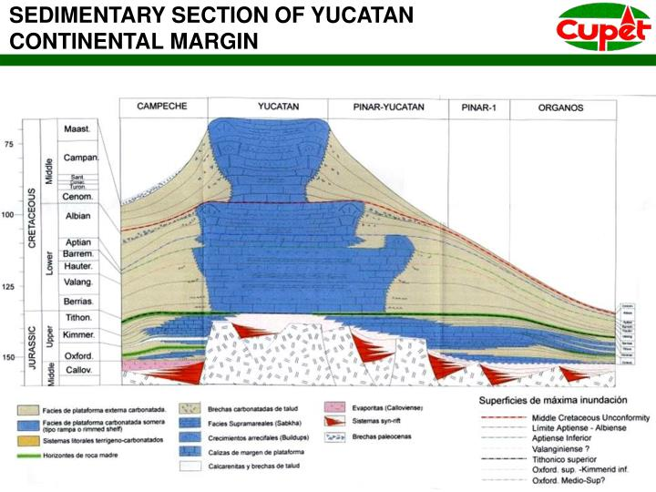 SEDIMENTARY SECTION OF YUCATAN