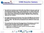 iawg executive summary