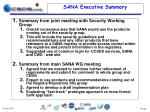 sana executive summary