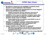 sawg open issues
