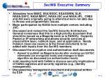 secwg executive summary