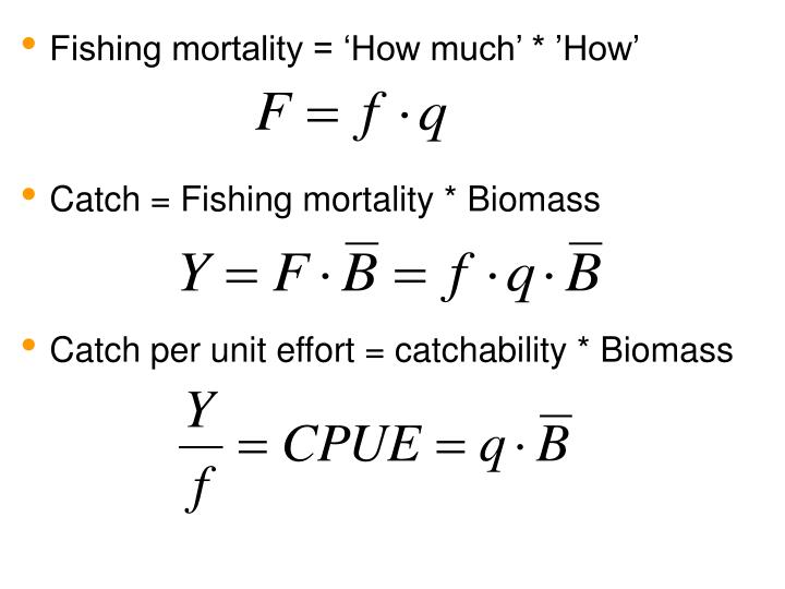 Fishing mortality = 'How much' * 'How'