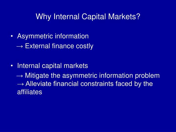 Why Internal Capital Markets?