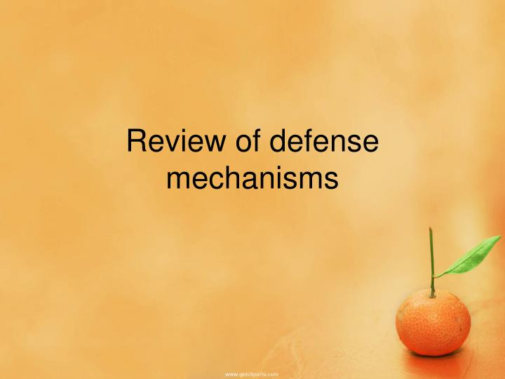 Review of defense mechanisms